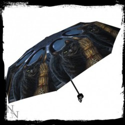 Regenschirm Hexenbesen Familiar