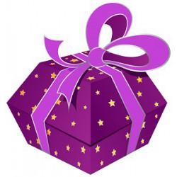 Geschenkgutschein SFr. 400.00