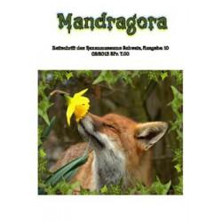 Mandragora Nr. 10