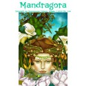 Mandragora Nr. 17